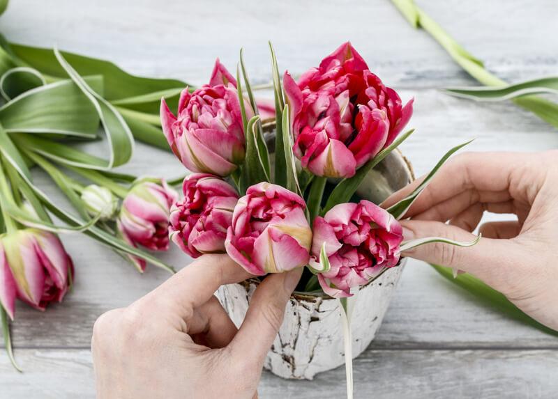 Blumengesteck - Blumen Echelmeyer